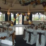 willows function